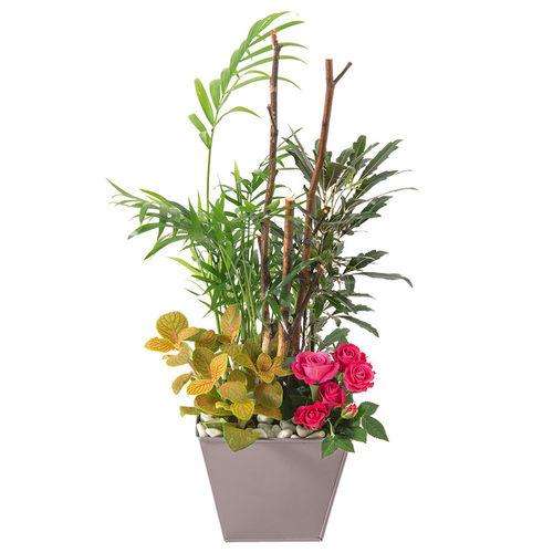fleurs nature livraison possible en de 4h profitez de la livraison gratuite sur saintes. Black Bedroom Furniture Sets. Home Design Ideas